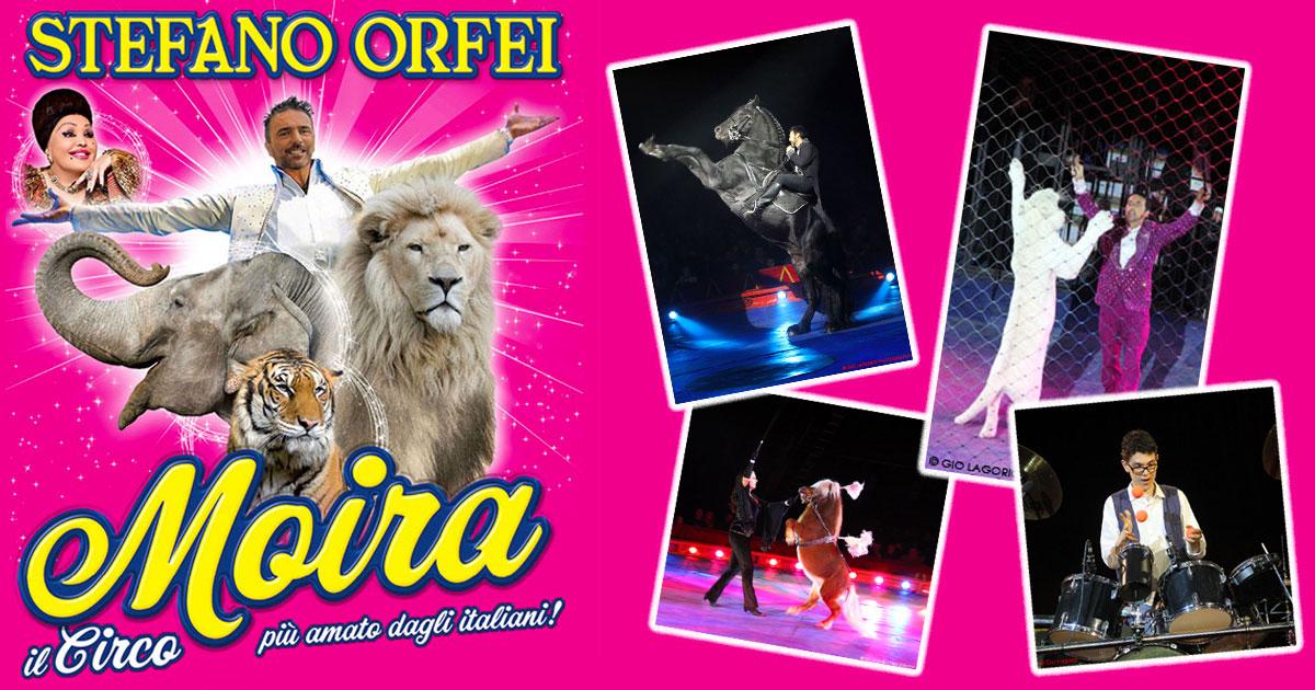 Circo Moira Orfei Torino